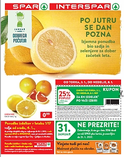 Spar in Interspar katalog do 10. 01.