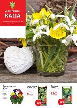 Kalia katalog februar 2018