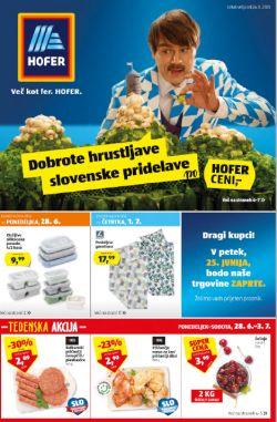 Hofer katalog od 24. 6.